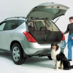 Universal Pet Barrier